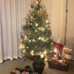 え!?本物のツリーで飾り付け!?【カナダでのクリスマス】